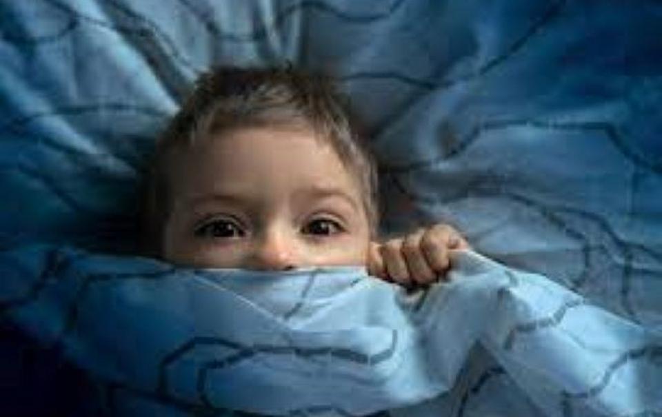 Tutela e protezione dei minori: indicazioni e criteri operativi per assistenti sociali